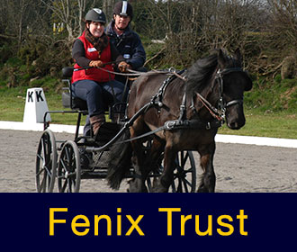 The Fenix Training Trust