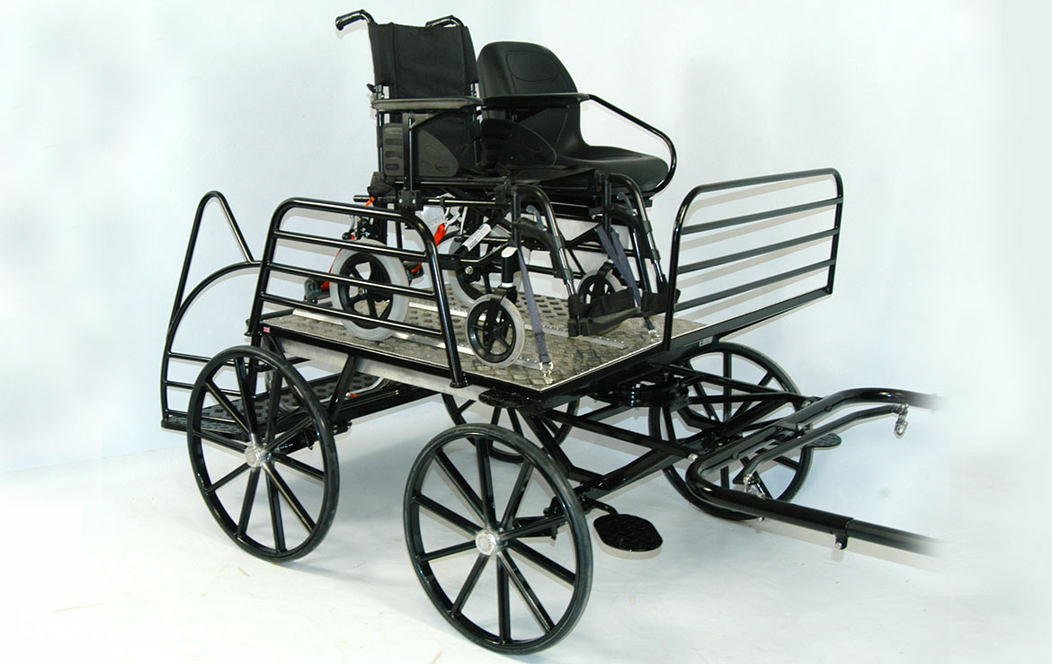 Freedom Carriage for the Diasbled