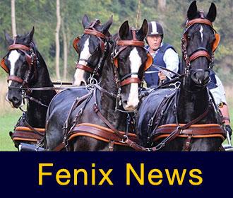 Fenix News